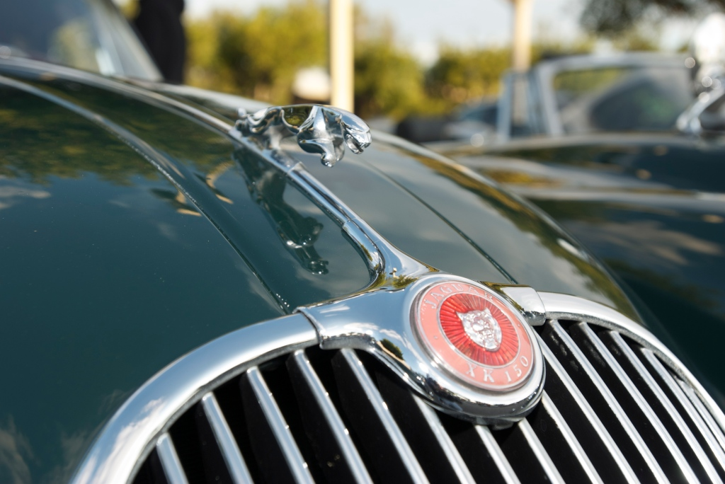 Green Jaguar XK 150 roadster_ hood ornament_Cars&Coffee/Irvine_12/17/11