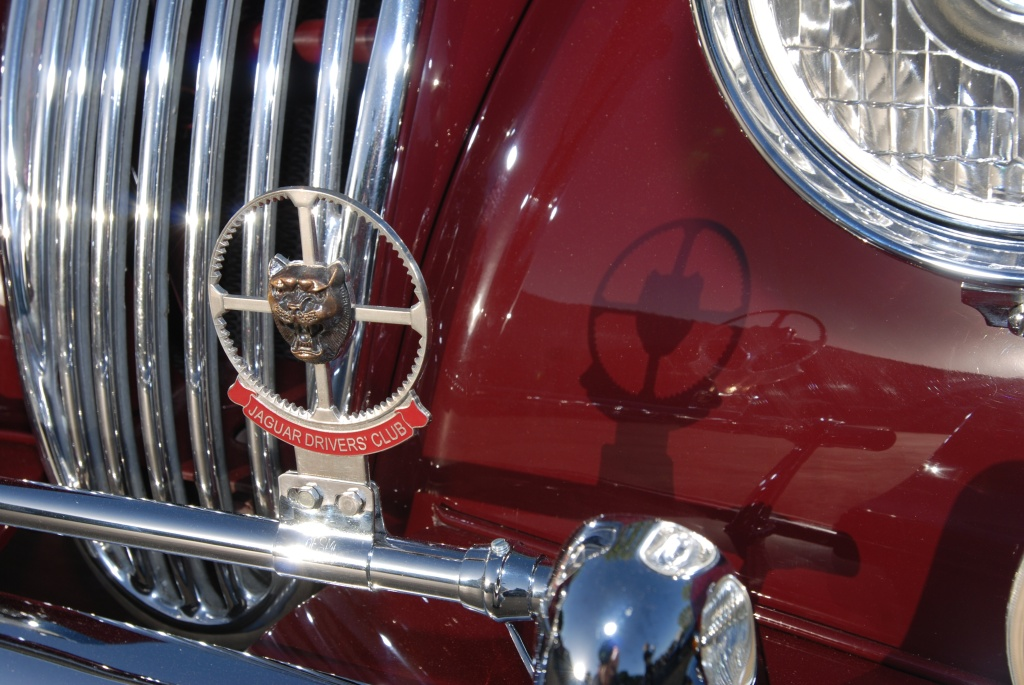 Burgundy Jaguar XK 150_badge and shadow_Cars&Coffee_5/28/12