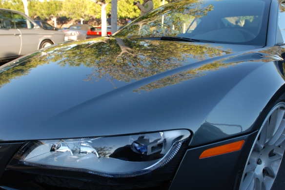 Daytona Grey pearl Audi R8 V10_3/4 front view w/hood reflections_Cars&Coffee/Irvine_January 19, 2013