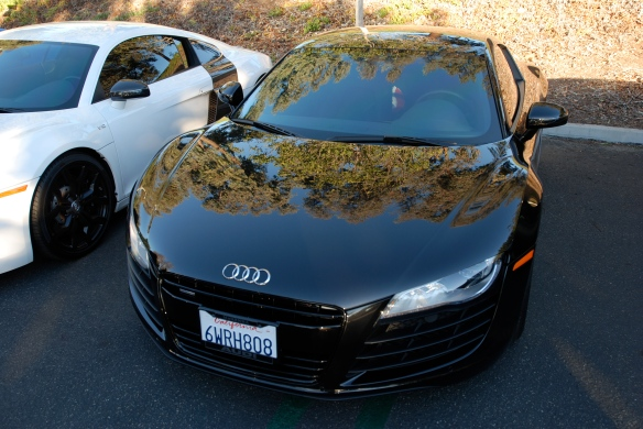 Black Audi R8_ front view w/tree reflections_Cars&Coffee/Irvine_January 19, 2013