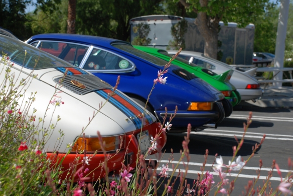 1970s  911s_  group shot back ends_RGruppe Solvang Treffen_May 18, 2013