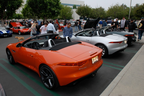 A trio of 2014 Jaguar F Type roadsters_rear view_Cars&Coffee/Irvine_May 11, 2013