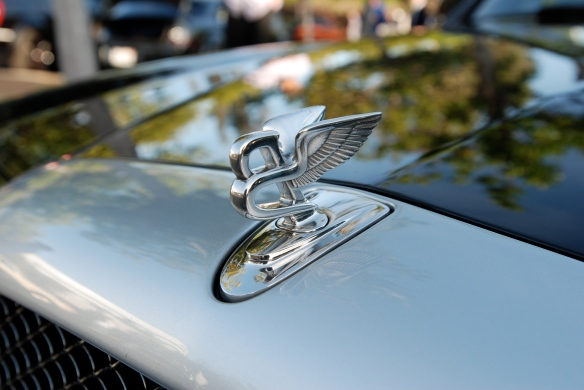 Bentley hood emblem_close up_Cars&Coffee/Irvine_April 20, 2013