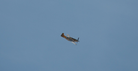 WWII reenactment_Aerial flyover by P-51D mustang_banking right_Boys Republic / Steve McQueen car&motorcycle show _June 1, 2013