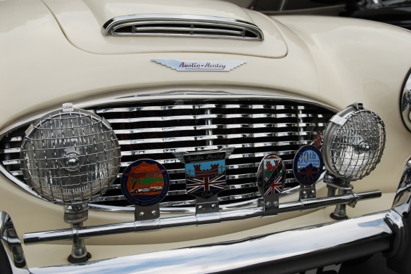 Cream colored Austin Healey 100_front grill shot_cars&coffee/irvine_May 10, 2014
