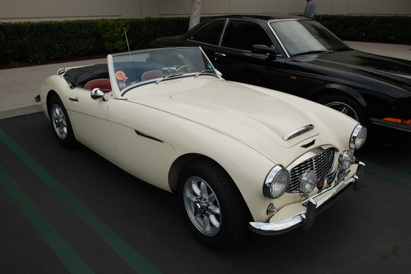 Cream colored Austin Healey 100_3/4 front view_cars&coffee/irvine_May 10, 2014